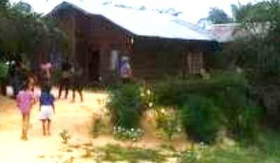 DLHK Diminta Tegas, Athur Berau Dikabarkan Akan Jual Cepat Lahan dalam Kawasan Hutan Bukit Batabuah