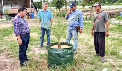 Penggunaan Pupuk Organik di Pusdiklat DPP APPI Diuji Cobakan