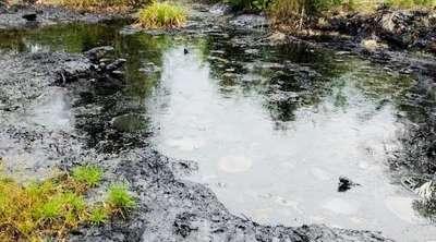 Jangan Hengkang Sebelum Chevron Memulihkan Limbah Blok Rokan, ARIMBI; Laporan Pidana Lingkungannya Hampir Siap