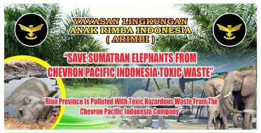 "Jokowi ke Riau ""Lupa"" Ada Limbah Chveron, ARIMBI; Copot Menteri LHK"