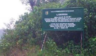 Ratusan Hektare Hutan Lindung Bukit Betabuh Diduga Digarap Tanpa Izin Oleh Pengusaha Pekanbaru