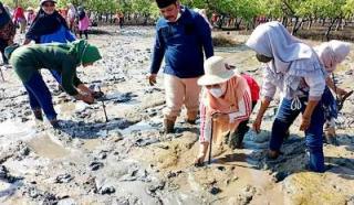 DPW Bengkalis Tanam Mangrove di Pulau Terluar Selat Malaka